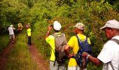 Trail Walk RIVIERE-SALEE - JOUBADIÈRE - MORNE CONSTANT - PAGERIE - Photo 45