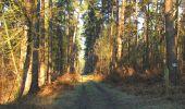 Randonnée Marche SAINT-JEAN-AUX-BOIS - en forêt de Compiègne_19_le Puits d'Antin_les Mares St-Louis_La Muette - Photo 14
