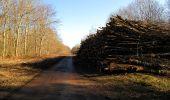Trail Walk RETHEUIL - en forêt de Retz_76_dans les forêts de Retz et de Compiègne - Photo 82