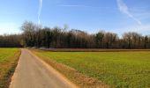 Trail On foot VIEUX-MOULIN - en forêt de Compiègne_23_la Grotte des Ramoneurs_le Mont Berny - Photo 63