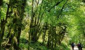Randonnée Marche SAINT-GERVAIS - Les Gorges du Gorgonnet par le hameau des Monts - Photo 3
