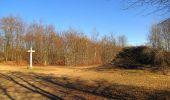Trail Walk PIERREFONDS - en forêt de Compiègne_24_Tournantes sur le Voliard et sur la Fortelle_chaussée Brunehaut - Photo 131
