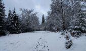 Trail Walk Sainte-Ode - rando lavacherie 29/12/2020 - Photo 23