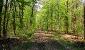 Randonnée Marche LONGPONT - en forêt de Retz_77_Longpont_Puiseux en Retz_AR - Photo 6