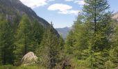 Trail Walk CEILLAC - J5 Ceillac  - Photo 3