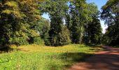 Trail Walk DAMPLEUX - en forêt de Retz_80_sur la Route Tortue et la Route Droite - Photo 6