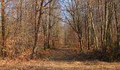 Trail Walk PIERREFONDS - en forêt de Compiègne_24_Tournantes sur le Voliard et sur la Fortelle_chaussée Brunehaut - Photo 85