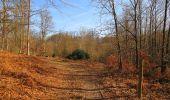 Trail On foot VIEUX-MOULIN - en forêt de Compiègne_23_la Grotte des Ramoneurs_le Mont Berny - Photo 7