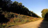 Trail Walk DAMPLEUX - en forêt de Retz_80_sur la Route Tortue et la Route Droite - Photo 16