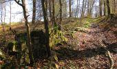 Randonnée A pied VILLERS-COTTERETS - le GR11A  dans la Forêt de Retz  - Photo 57