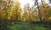 Randonnée Marche SAINT-JEAN-AUX-BOIS - en forêt de Compiègne_32_11_2019_les Tournantes de la Muette et sous la Tête Saint-Jean - Photo 112