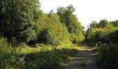 Trail Walk DAMPLEUX - en forêt de Retz_80_sur la Route Tortue et la Route Droite - Photo 131