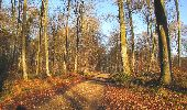 Trail Walk SAINT-JEAN-AUX-BOIS - en forêt de Compiègne_33_12_2019_les Tournantes de l'étang Saint-Jean et des Prés Saint-Jean - Photo 67