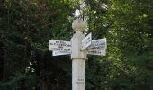 Randonnée Marche LACROIX-SAINT-OUEN - en forêt de Compiègne_35_la Croix Saint-Sauveur_le Ru du Goderu - Photo 17