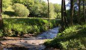 Randonnée Marche Havelange - Bois, Rivière et champs - Photo 18