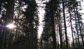 Trail Walk ECROMAGNY - 16-02-20 Ecromagny : circuit Epoissets + étangs de la Chaussée - Photo 6
