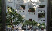 Randonnée Marche LES ANSES-D'ARLET - cap salomon - Photo 8