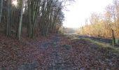 Randonnée A pied VILLERS-COTTERETS - le GR11A  dans la Forêt de Retz  - Photo 138