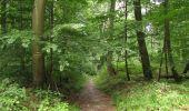 Randonnée Marche SAINT-JEAN-AUX-BOIS - en forêt de Compiègne_2_ruines gallo-romaines de Champlieu_les Petits Monts - Photo 114