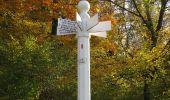 Randonnée Marche SAINT-JEAN-AUX-BOIS - en forêt de Compiègne_32_11_2019_les Tournantes de la Muette et sous la Tête Saint-Jean - Photo 195