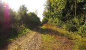 Trail Walk DAMPLEUX - en forêt de Retz_80_sur la Route Tortue et la Route Droite - Photo 110