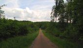 Randonnée Marche COYOLLES - en forêt de Retz_78_les rayons du Rond Capitaine - Photo 149