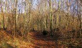 Trail On foot VIEUX-MOULIN - en forêt de Compiègne_23_la Grotte des Ramoneurs_le Mont Berny - Photo 89