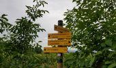 Trail Walk MONTHELIE - De Monthelie à Pommard - Photo 9