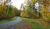 Randonnée Marche SAINT-JEAN-AUX-BOIS - en forêt de Compiègne_32_11_2019_les Tournantes de la Muette et sous la Tête Saint-Jean - Photo 148