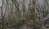 Randonnée Marche SAINT-GERVAIS - gorges du Gorgonnet - Photo 1