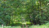 Randonnée Marche SAINT-JEAN-AUX-BOIS - en forêt de Compiègne_2_ruines gallo-romaines de Champlieu_les Petits Monts - Photo 136