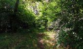 Randonnée Marche SAINT-JEAN-AUX-BOIS - en forêt de Compiègne_6_les Grands Monts_la route tournante sur la tête St-Jean - Photo 136