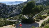 Trail Mountain bike MARSEILLE - Trilogie des Calanques version courte - Photo 4
