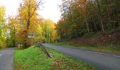 Randonnée Marche SAINT-JEAN-AUX-BOIS - en forêt de Compiègne_32_11_2019_les Tournantes de la Muette et sous la Tête Saint-Jean - Photo 153