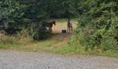 Randonnée Marche LOCMELAR - ballade 270719 - Photo 21