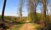 Randonnée Marche LONGPONT - en forêt de Retz_77_Longpont_Puiseux en Retz_AR - Photo 52