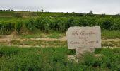 Trail Walk MONTHELIE - De Monthelie à Pommard - Photo 3