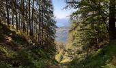 Randonnée Marche REALLON - Clot l'herbous - Photo 6