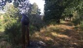 Randonnée Marche Sainte-Ode - Transardenaise étape 2 - Photo 2