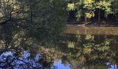 Randonnée Trail NEANT-SUR-YVEL - Autour des étangs à partir du gîte de tante Phonsine - Photo 6