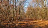 Trail Walk PIERREFONDS - en forêt de Compiègne_24_Tournantes sur le Voliard et sur la Fortelle_chaussée Brunehaut - Photo 27