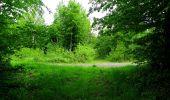 Randonnée Marche COYOLLES - en forêt de Retz_78_les rayons du Rond Capitaine - Photo 8