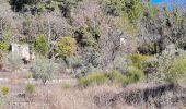 Randonnée Marche PLAN-D'AUPS-SAINTE-BAUME - source Huveaune, chemin des rois - Photo 13