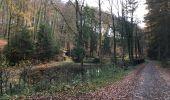 Randonnée Marche nordique Arlon - Wolkrange - Photo 5