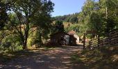 Trail Walk NIEDERBRUCK - Niederbruck-Graber - Photo 3