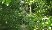 Randonnée Marche LONGPONT - en foret de Retz_ 41_Longpont_Vertes Feuilles_AR - Photo 126