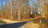 Trail Walk SAINT-JEAN-AUX-BOIS - en forêt de Compiègne_33_12_2019_les Tournantes de l'étang Saint-Jean et des Prés Saint-Jean - Photo 42