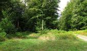 Randonnée Marche LONGPONT - en foret de Retz_ 41_Longpont_Vertes Feuilles_AR - Photo 142