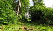 Randonnée Marche COYOLLES - en forêt de Retz_78_les rayons du Rond Capitaine - Photo 91