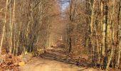 Trail Walk PIERREFONDS - en forêt de Compiègne_24_Tournantes sur le Voliard et sur la Fortelle_chaussée Brunehaut - Photo 86